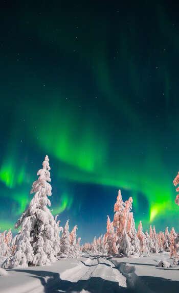 Zoom sur la Laponie