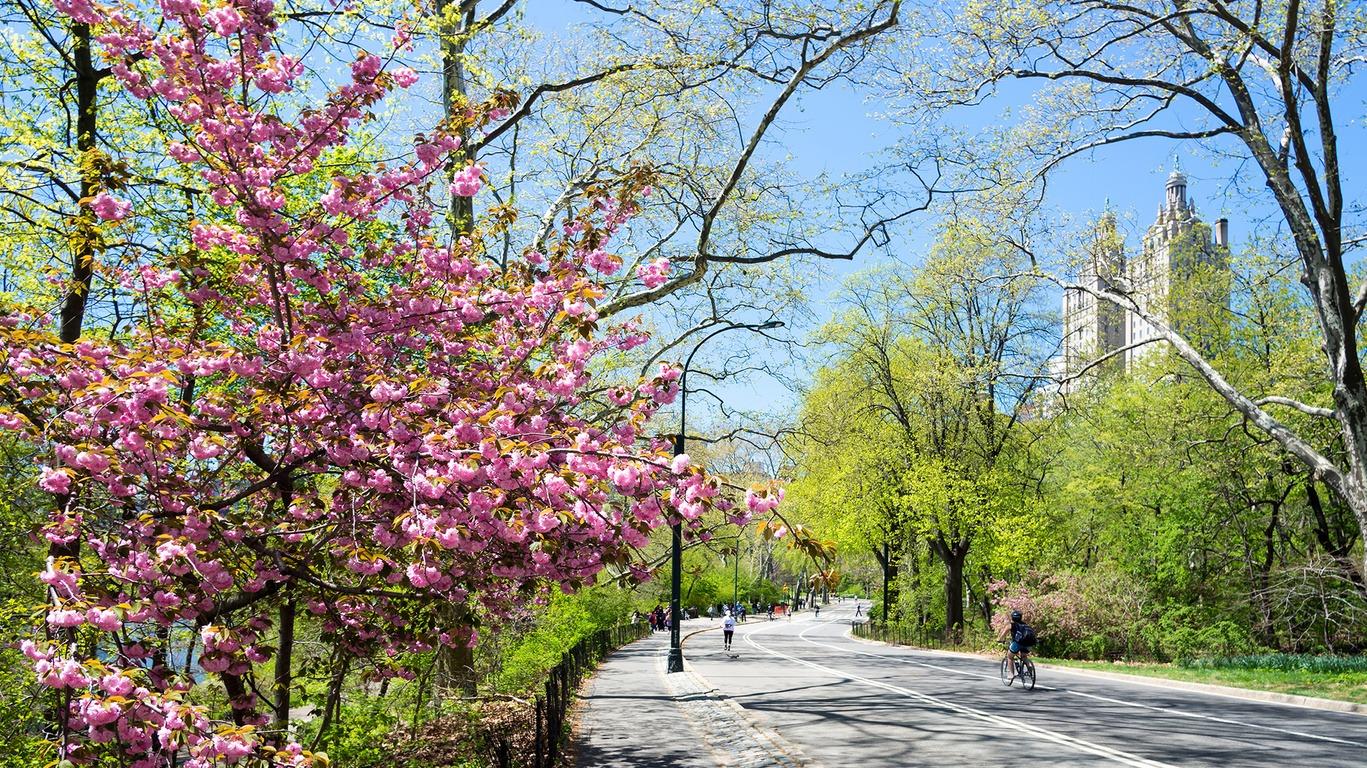 New York, ville créative et en perpétuel renouvellement
