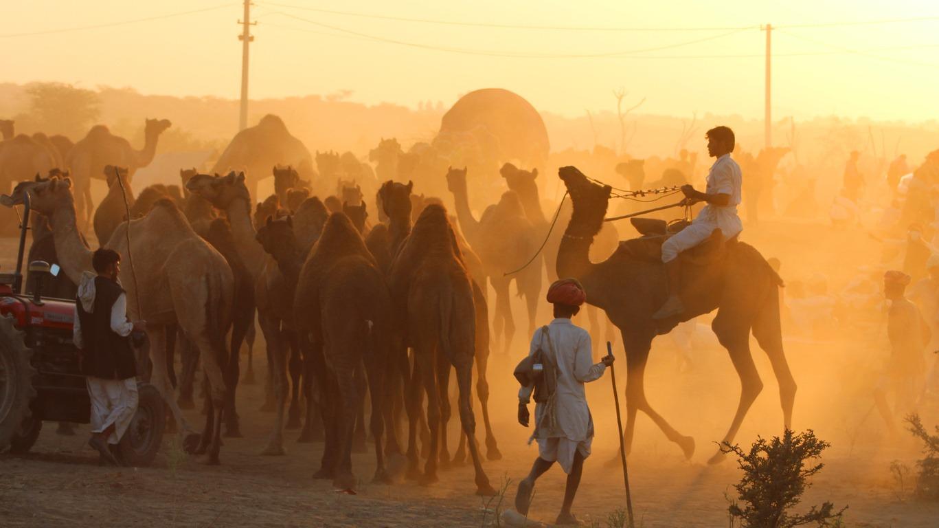 Pourquoi un voyage au Rajasthan avec Cercle des Voyages ?