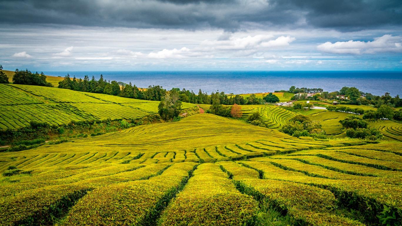 Séjour éco responsable aux Açores