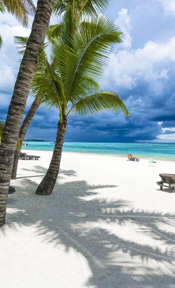 Un véritable paradis sur Terre