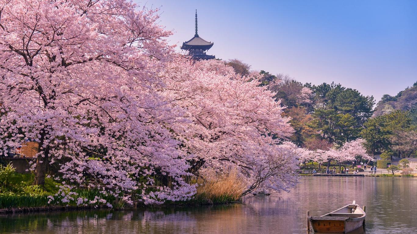 Pourquoi un voyage à Tokyo avec Cercle des Voyages ?