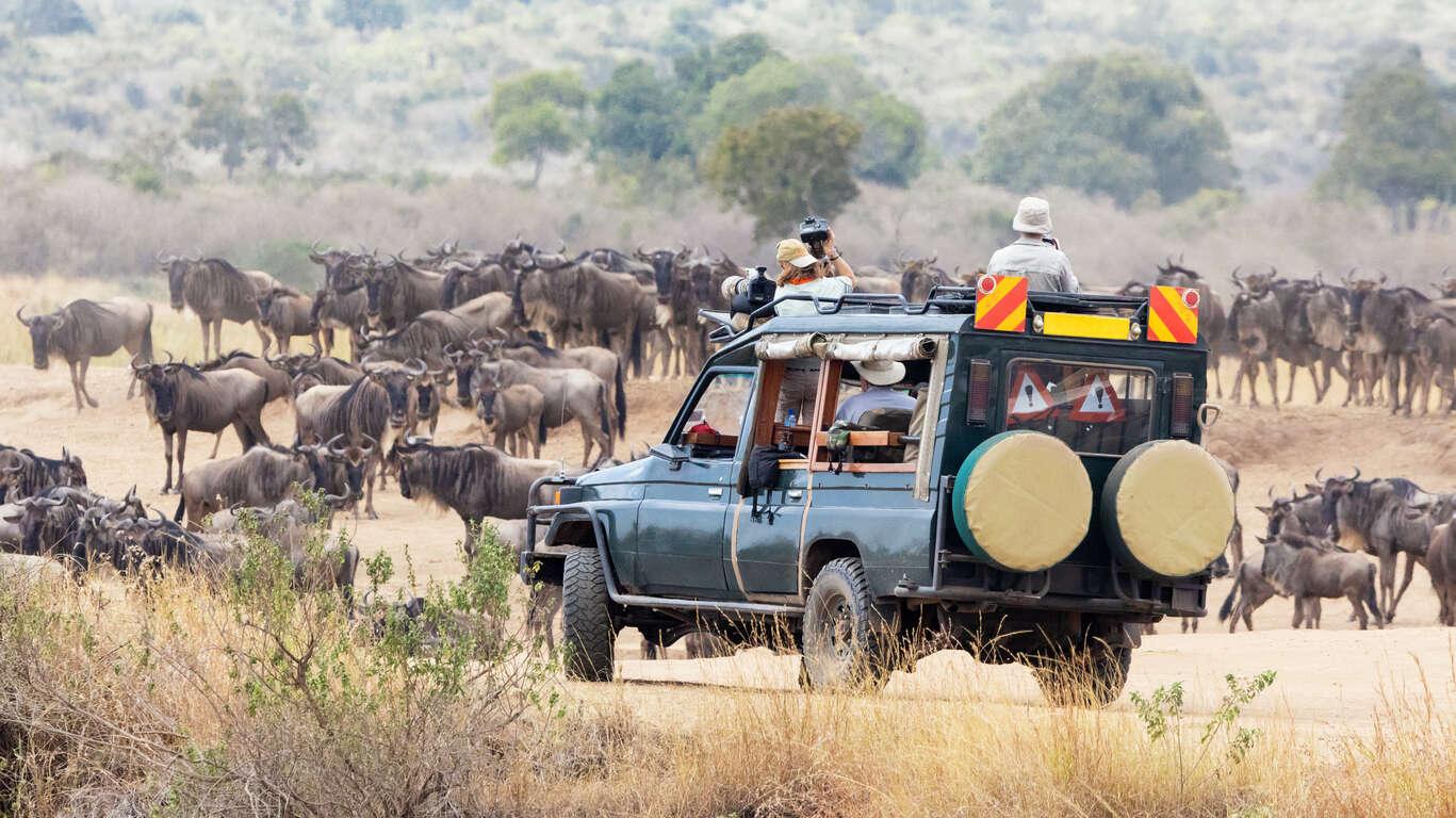 Safari au Kenya et plage à Zanzibar