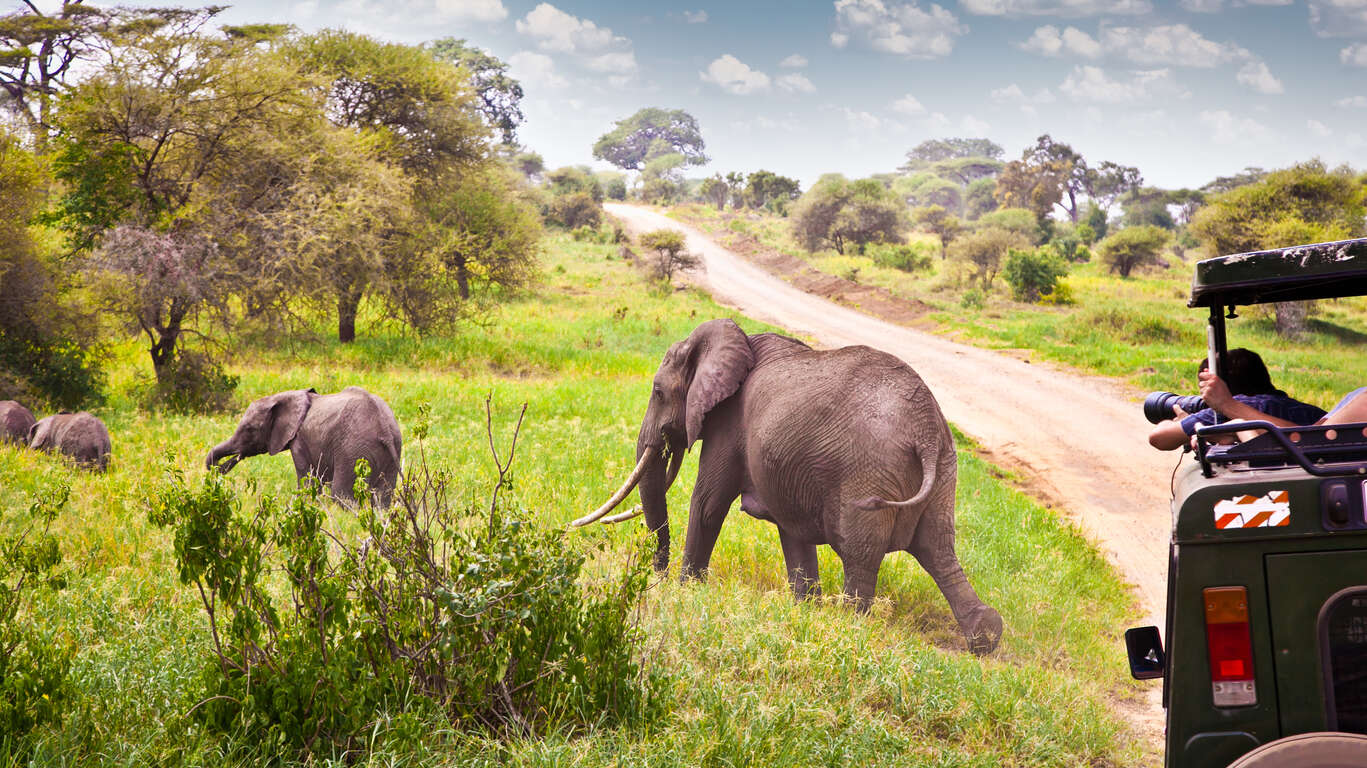 Pistes du Serengeti en 4×4 et balnéaire à Zanzibar