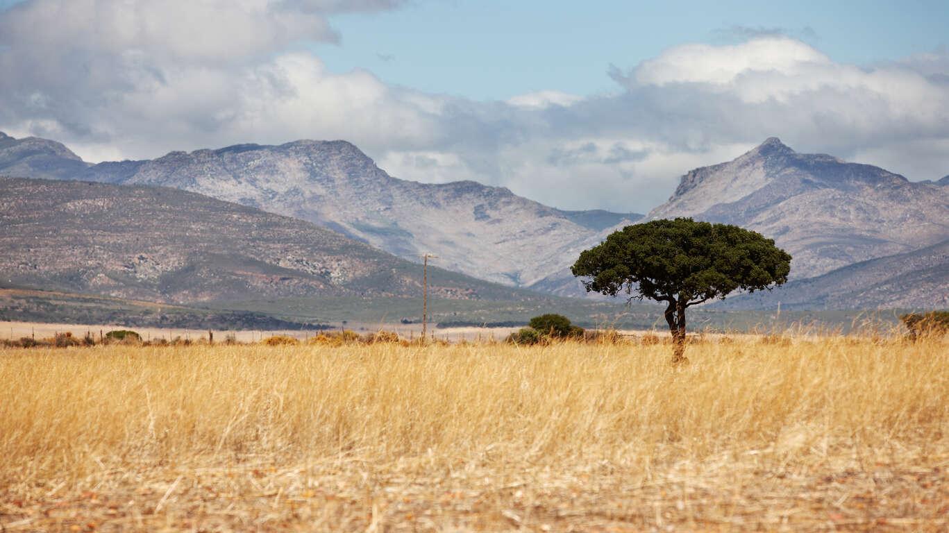 L'Afrique du Sud Version haut de gamme – en petit groupe et hébergements de charme