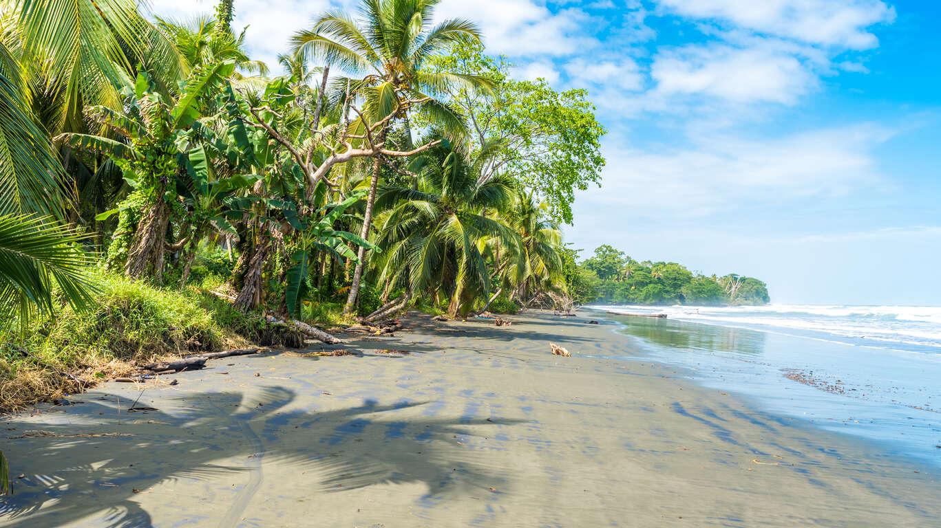 Des Caraïbes au Pacifique