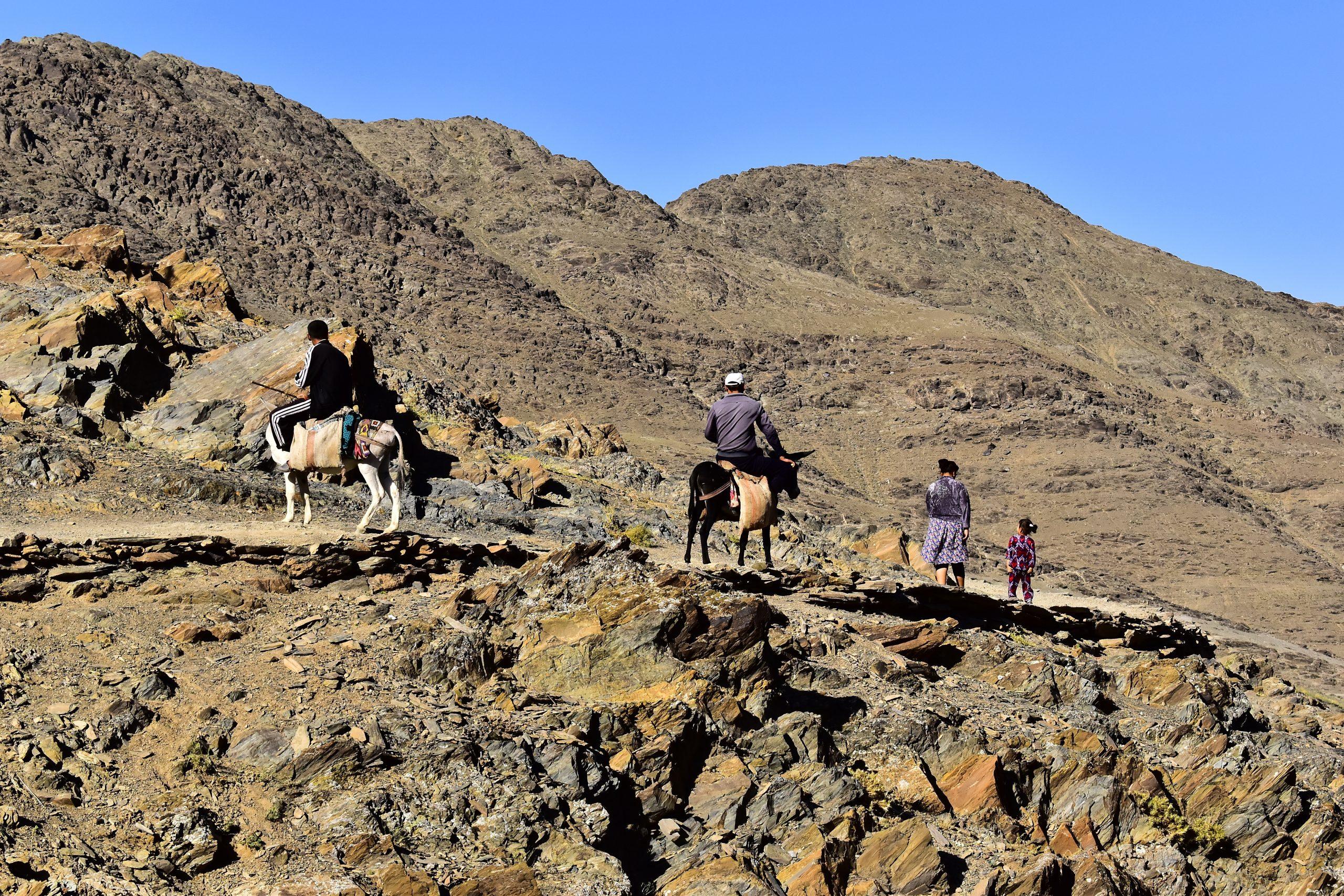 Héritage des cavaliers nomades sur la route de la soie