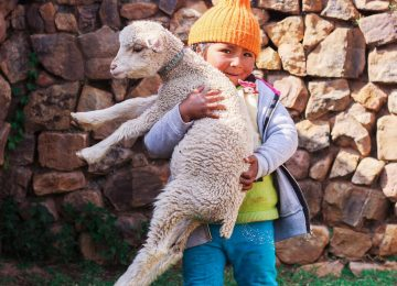 Le Pérou en famille : les merveilleuses cités d'or