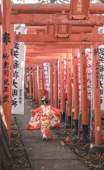 Guide Voyage Japon