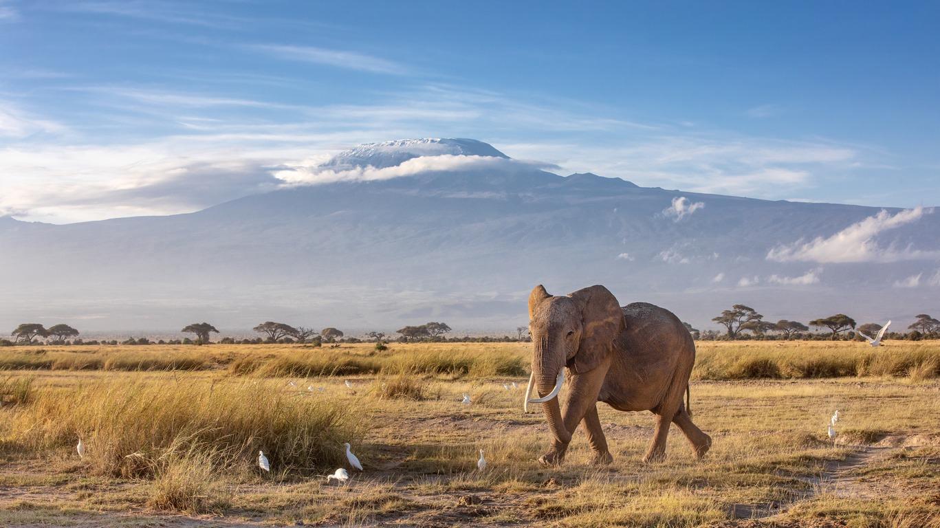 Voyage au Kilimandjaro