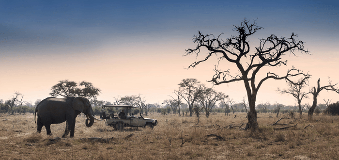 Circuit privé au Botswana