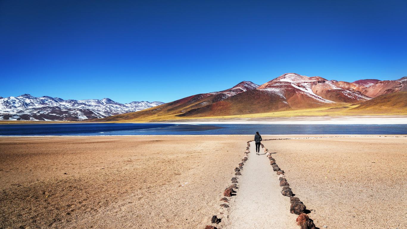 Voyage dans le Désert d'Atacama