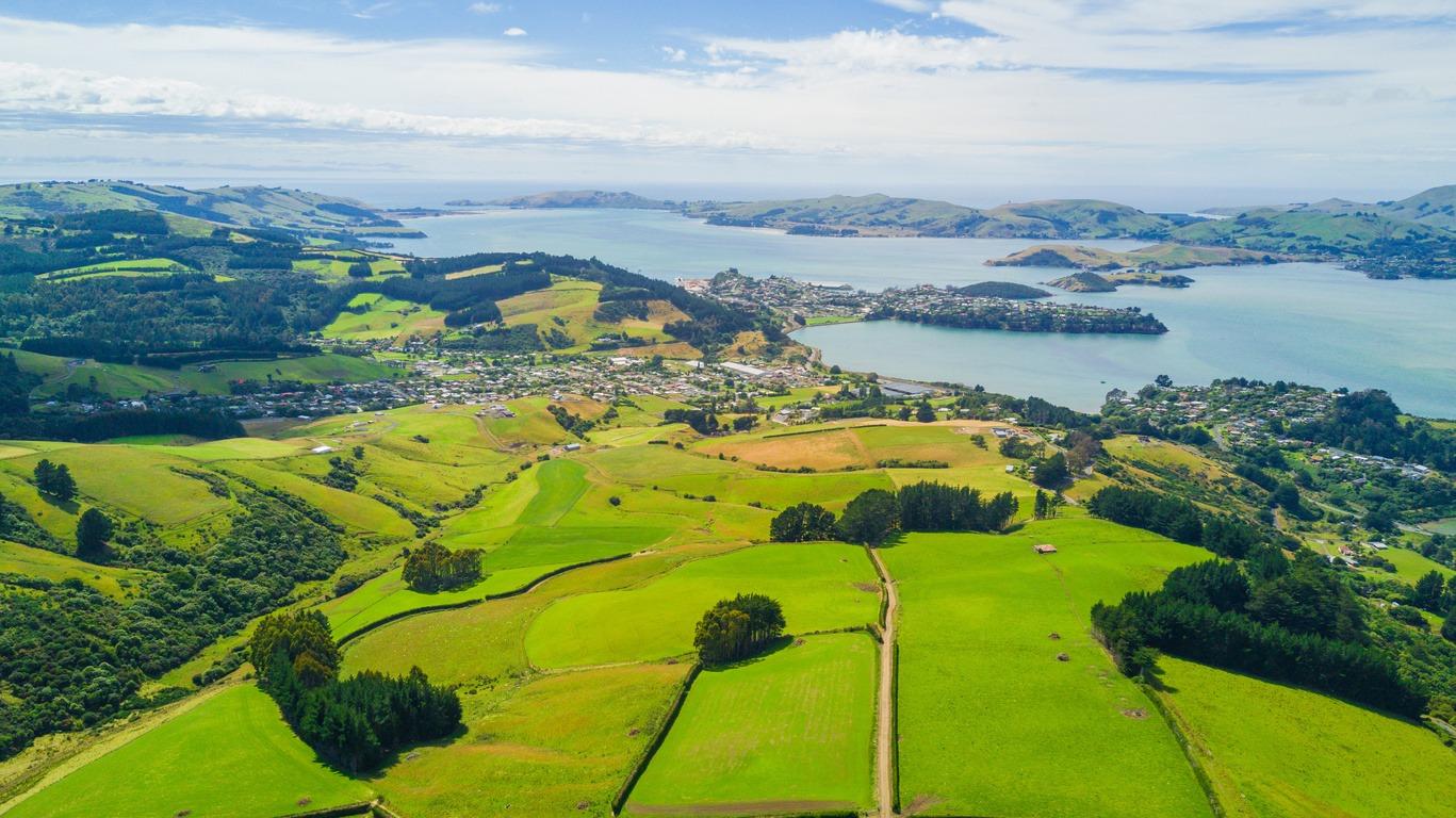 Voyage à Dunedin