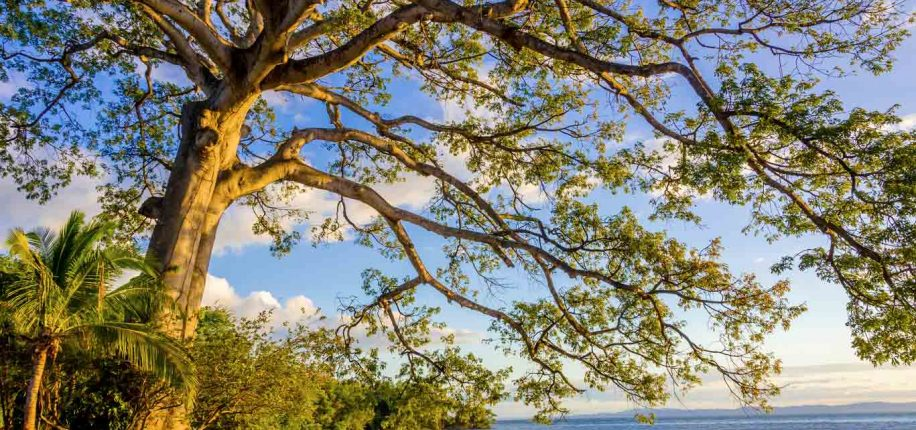 Lac de Nicaragua