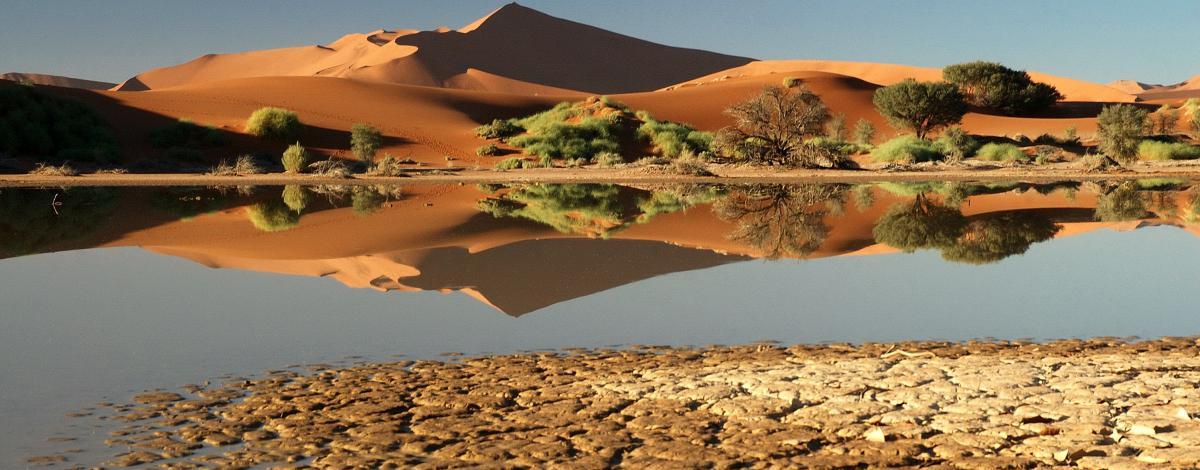 Incroyable Namibie : L'essentiel en petit groupe et véhicule 4×4
