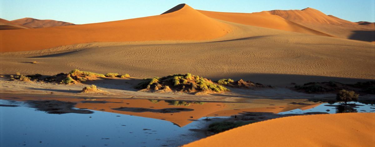 Voyage en Namibie en famille : safaris, dunes & océan
