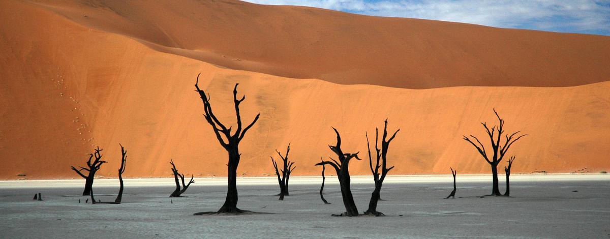 Trio australe : Namibie, Botswana et Chutes Victoria