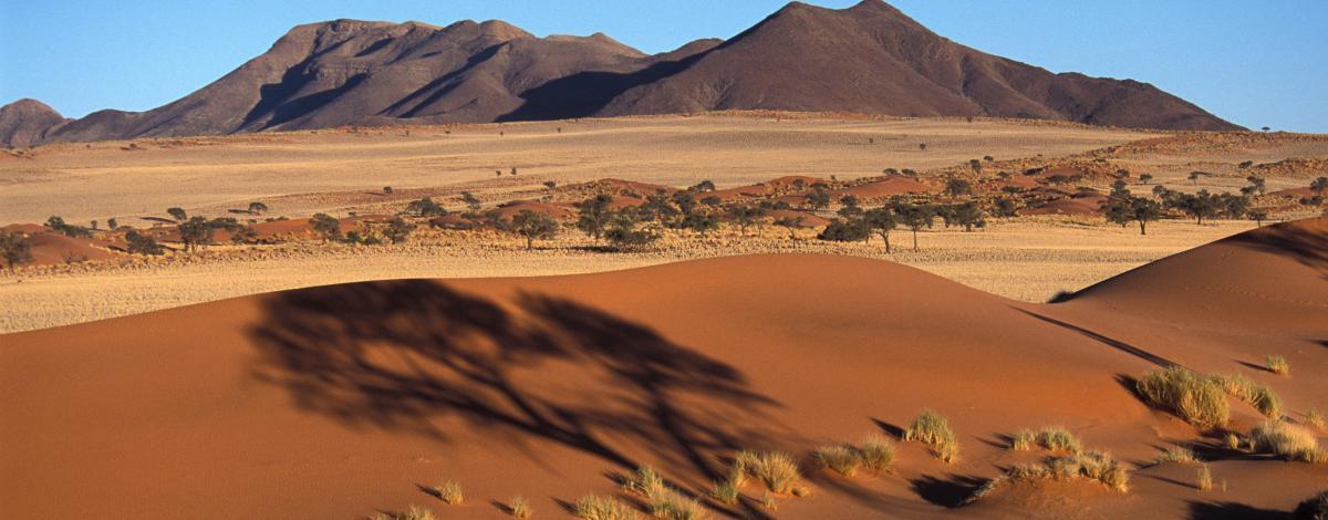 Autotour d'exception en Namibie