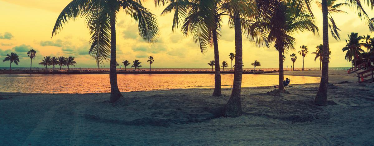 Séjour à Miami Beach