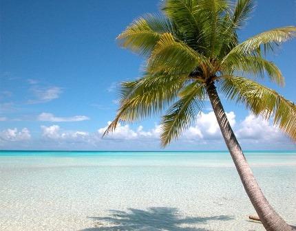 Séjour Cat Island et Harbour Island : sable rose et sable blanc