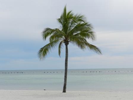 Autotour en Floride – Miami, Keys et Orlando