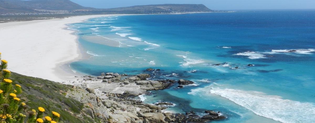 En famille ou entre amis: L'essentiel de l'Afrique du Sud en circuit privé avec guide francophone