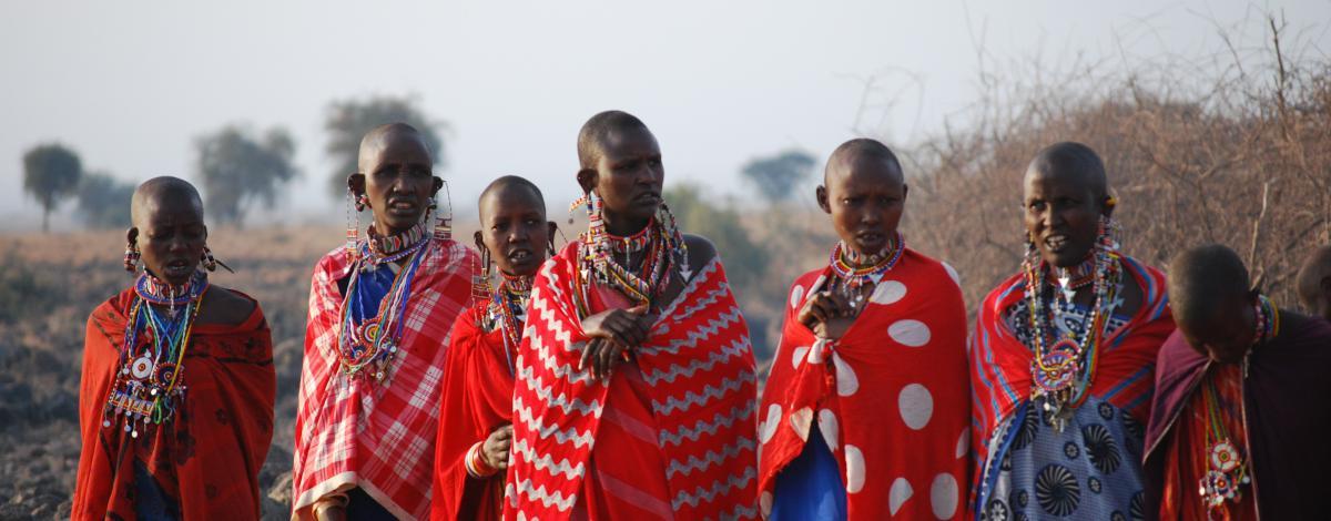 Safari combiné Kenya & Tanzanie