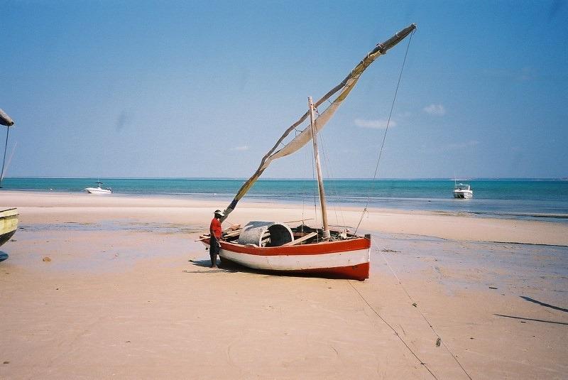 Safaris au  Parc Kruger et plage au Mozambique