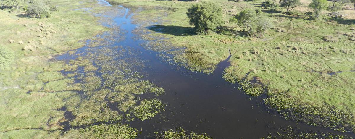 Safari camping au coeur de l'Okavango et Chutes Victoria