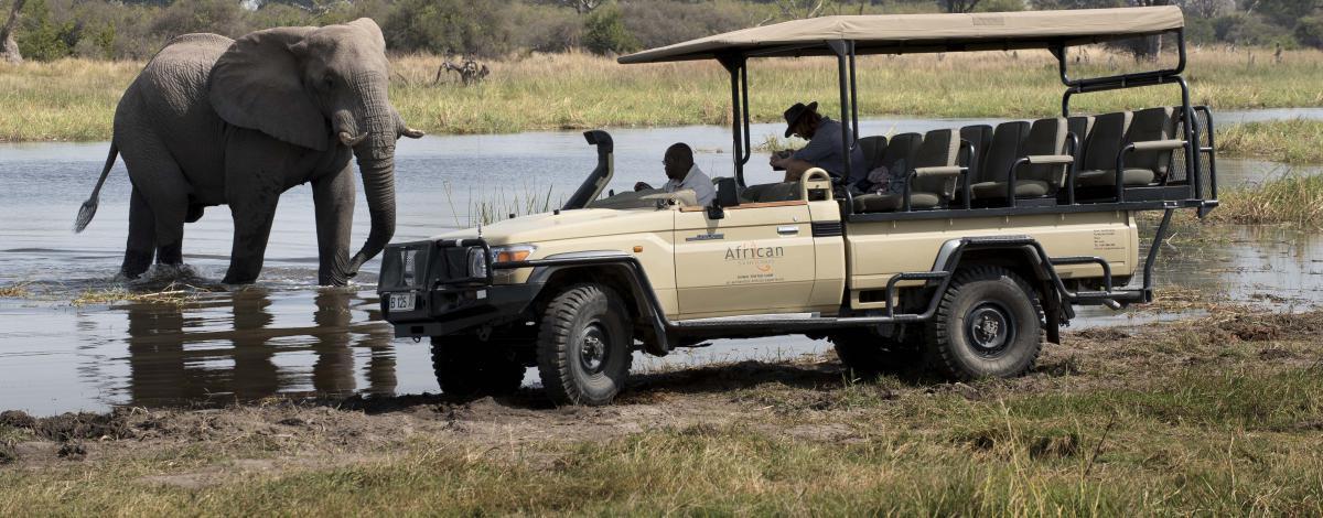 Safari au Botswana en camping version luxe et Chutes Victoria