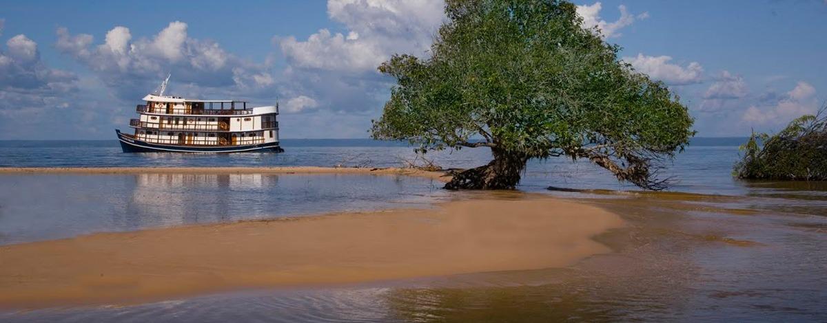 Immersion en Amazonie : croisière de charme à bord de l'Amazon Dream