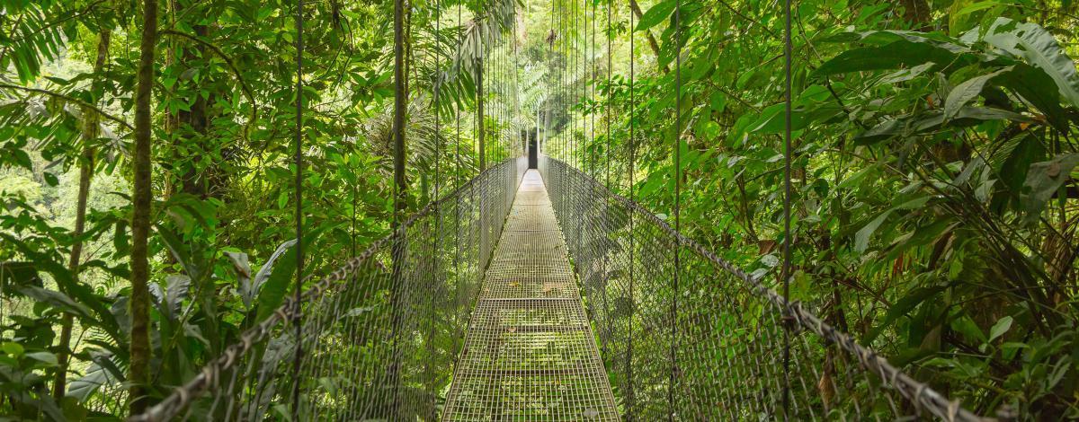 Le Costa Rica en un clin d'oeil