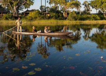 Safari au Botswana et Chutes Victoria : Chobe, Moremi et Delta de L'Okavango