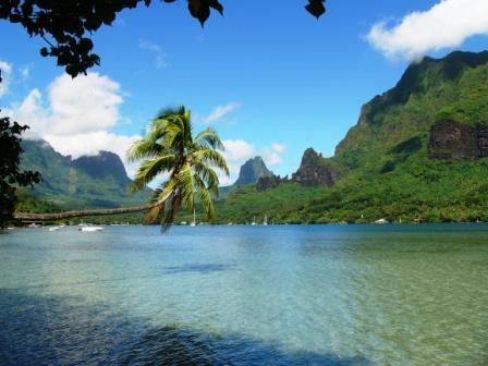Robinsonnade polynésienne : Tahiti Moorea et Tahaa