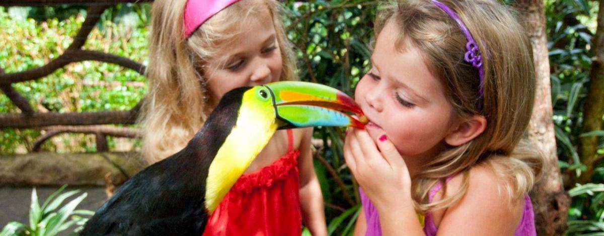 Le Costa Rica avec vos enfants, accompagné par guide francophone