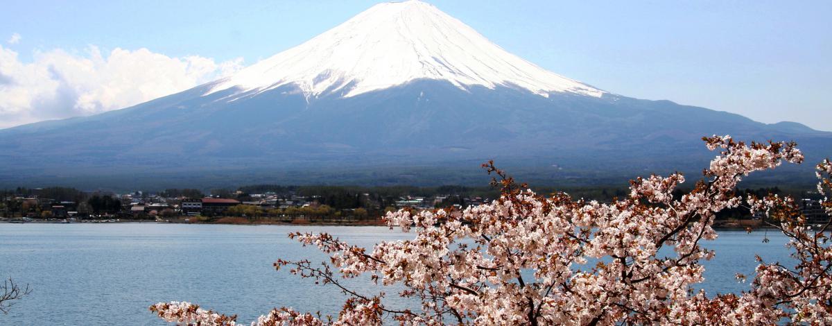 Voyage de Noces au Japon avec cérémonie Shinto