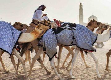 L'essentiel de Dubaï et Abu Dhabi