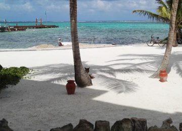Viva Belize