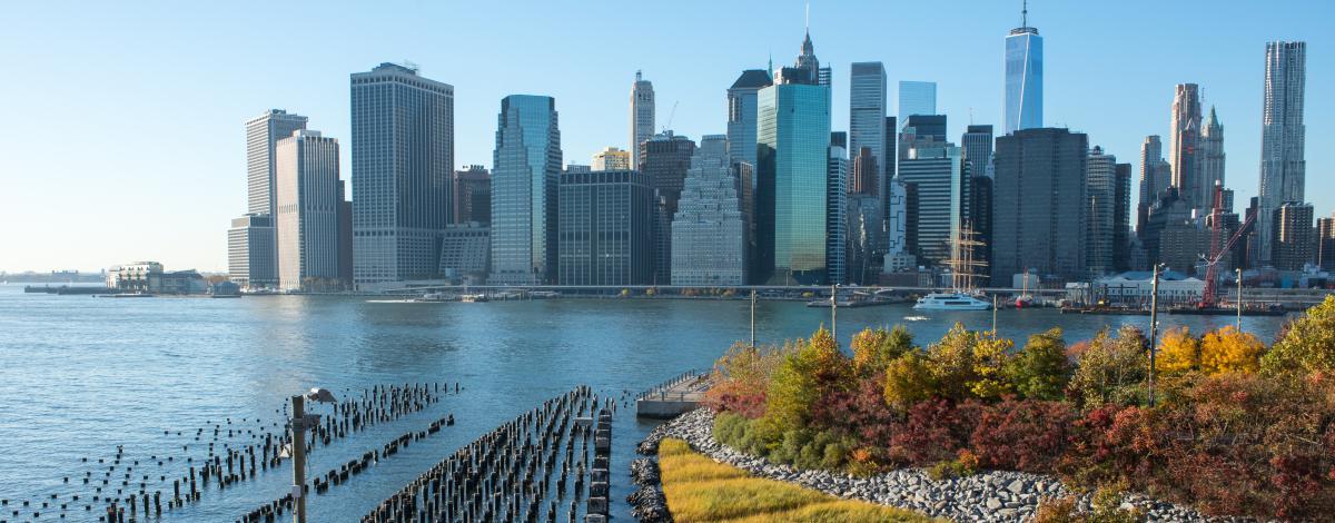 Séjour découverte de New York – visites incluses