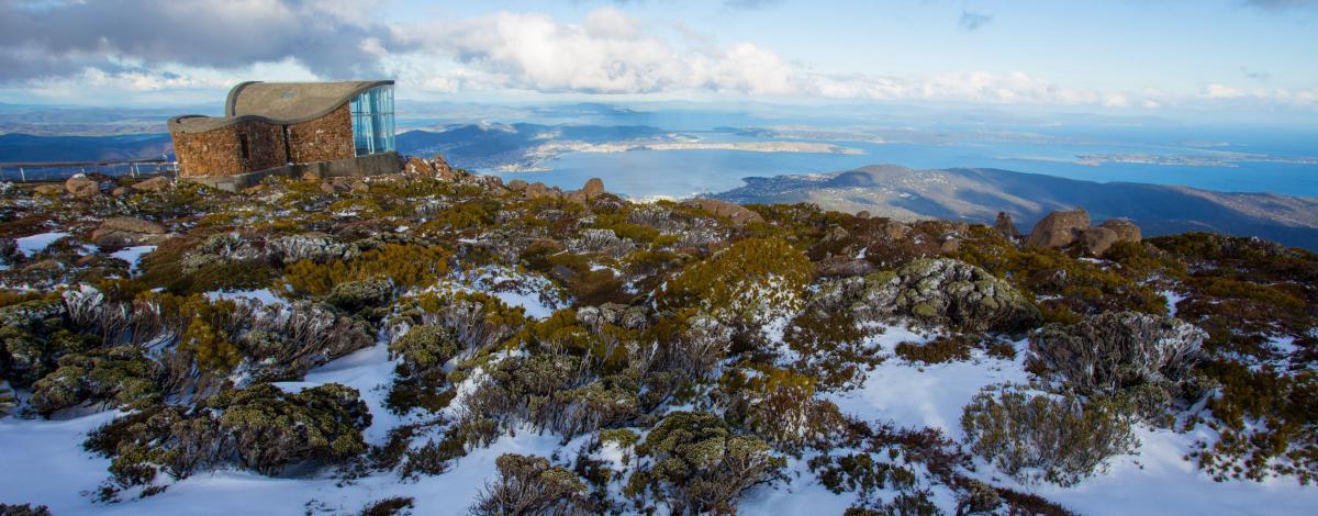 Tasmanie : vignoble, nature sauvage et gastronomie