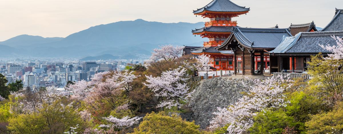 Voyage découverte du Japon