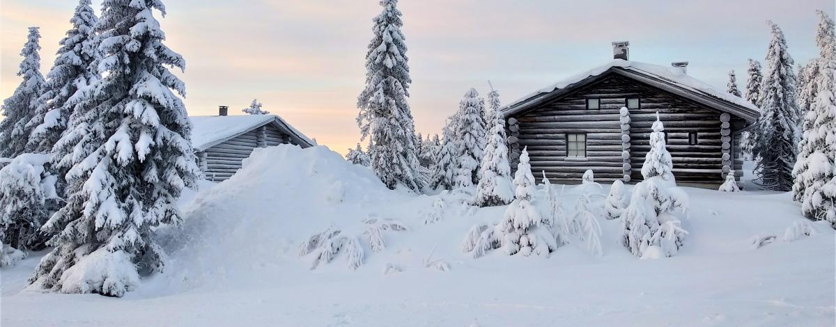 Votre petit chalet avec sauna en Laponie