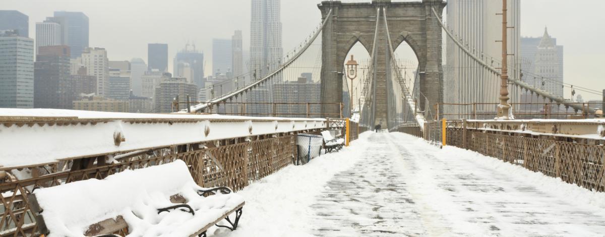 Voyage à New York en petit groupe avec guide francophone – hiver
