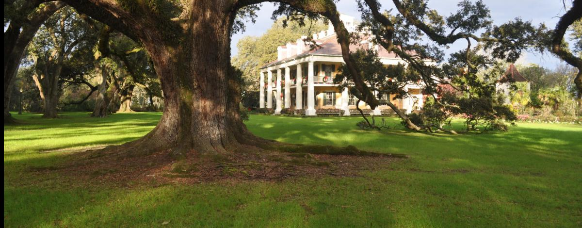 Voyage avec guide francophone en Louisiane