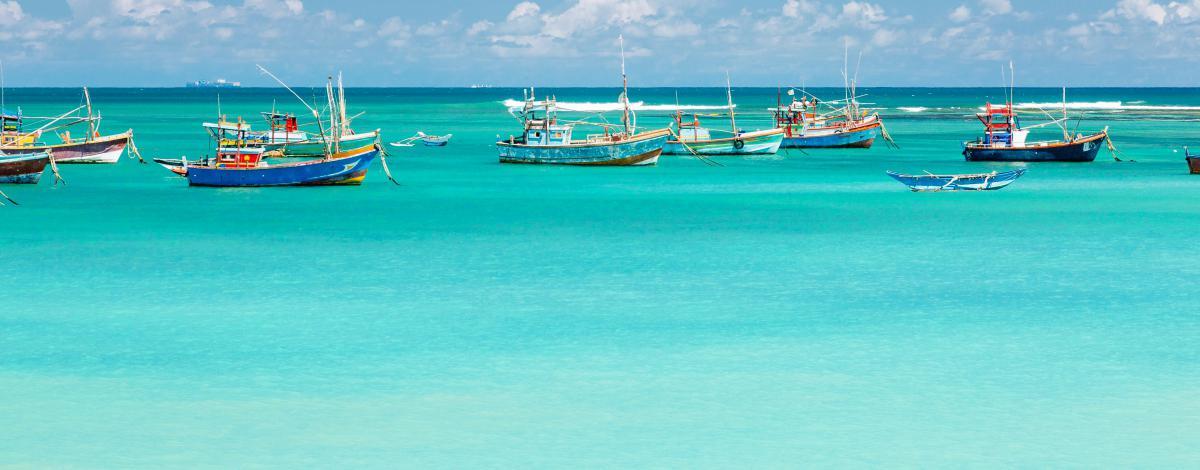Voyage de noces : combiné Sri Lanka et Maldives