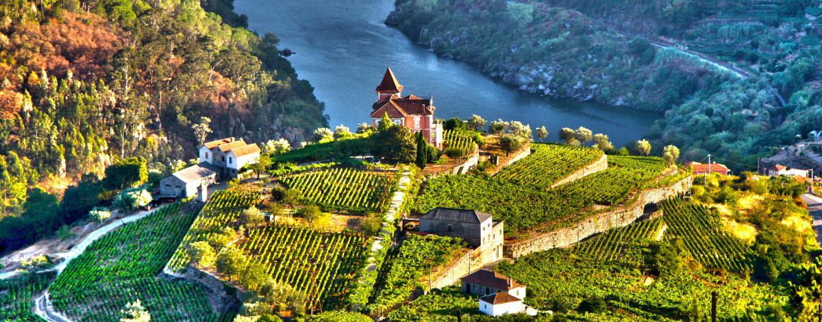 La route des vins et la Vallée du Douro