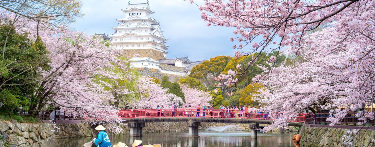 Japon en avril : au pays des cerisiers