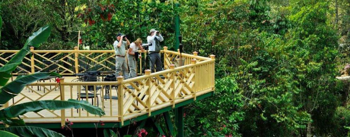 Les Facettes du Costa Rica