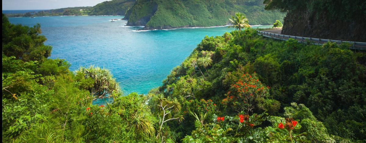 Combiné Alaska et Hawaii : de fjords en volcans