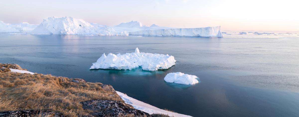 Randonnée et croisière au milieu des icebergs